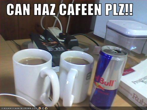 CAN HAZ CAFEEN PLZ!!