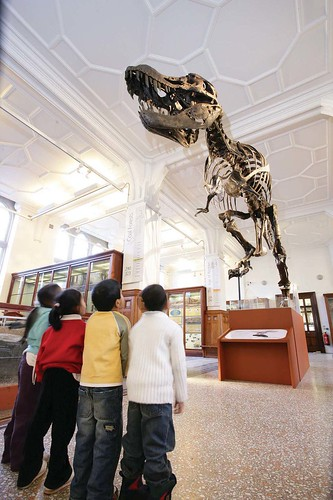 Image, Do you fancy Learning Outside the Classroom with Stan, our Trex?