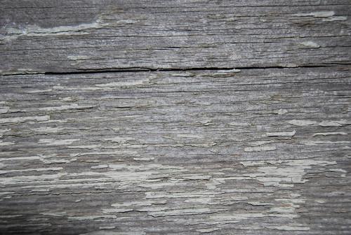 Wood Texture 06