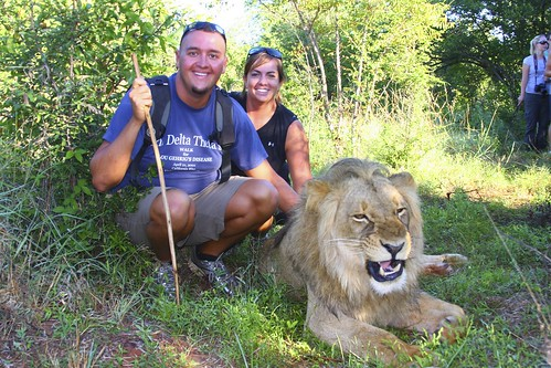 I can't believe we're petting a lion