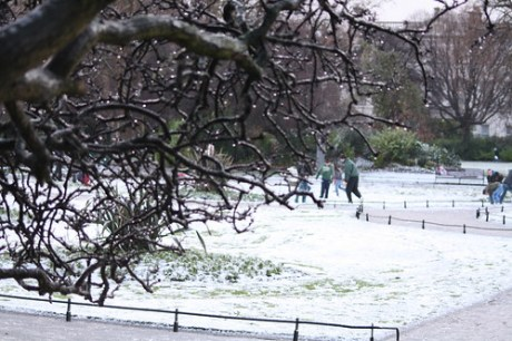 Snow in Stephens Green