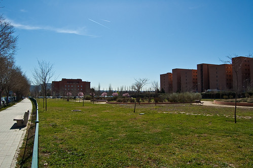 Campus primaveral