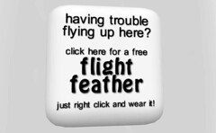 having trouble flying up here?