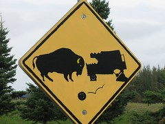 Buffalo road sign at Delta Junction, Alaska