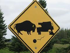 Buffalo road sign at Delta Junction, Alaska