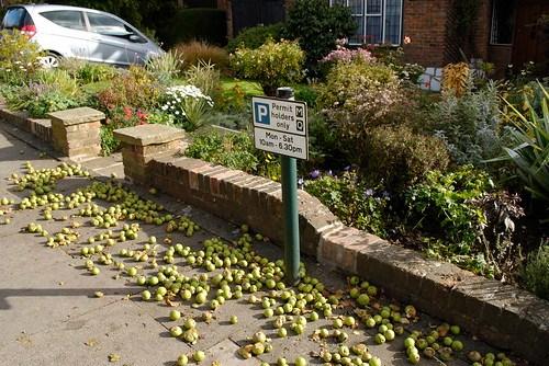 Hampstead Garden Suburb