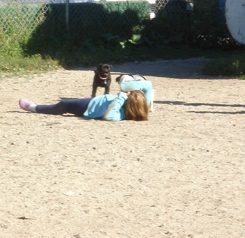 Here she is....LAYING ON THE GROUND of the dog park.