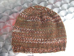 HatAdult_2009_09_11_Opal_with_brown