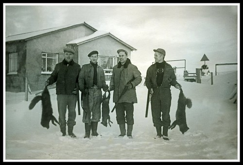 Tófur - 1957 - Fox hunting - A Tribute to 4 Great Friends. I Miss Them Very Much.