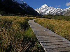 Mt.Cook, South Island, New Zealand