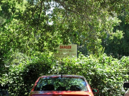 Park at your own risk!