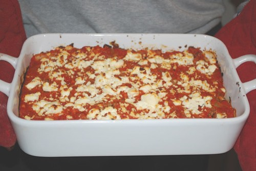Canneloni filled with lamb