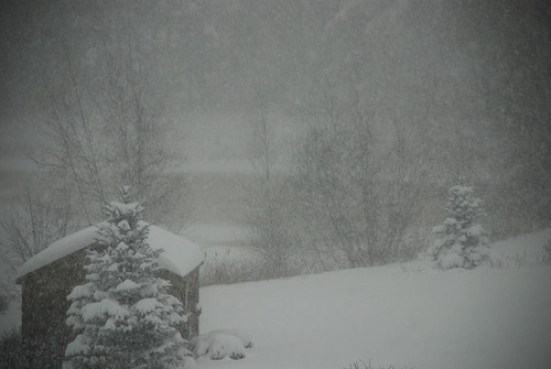 Snowstorm 2008