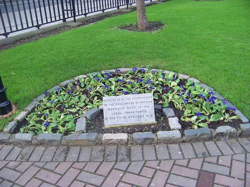 St. Patrick's Well