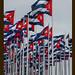 monte de banderas