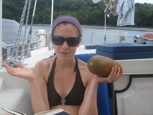 Hannah checks out huge cucumber (Dixons Reef, Malekula)