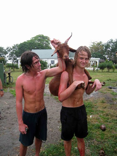 New Zealand boys bring their kill in for butchering, Lamango Ranch, Malekula