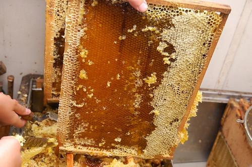 Под забрусом мёд