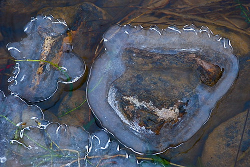 River ornaments