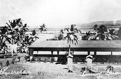 Views in Paradise, 1935