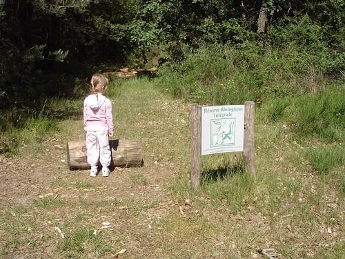 Résèrve Biologique, Forêt de Fontainebleau