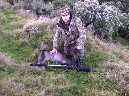 Whaleoil, Tikka T3 and Fallow Deer