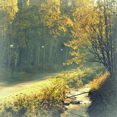 my way by Julia Lillqvist.