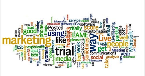 2009-01-14_Jame_wordle