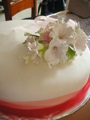 First wedding cake!