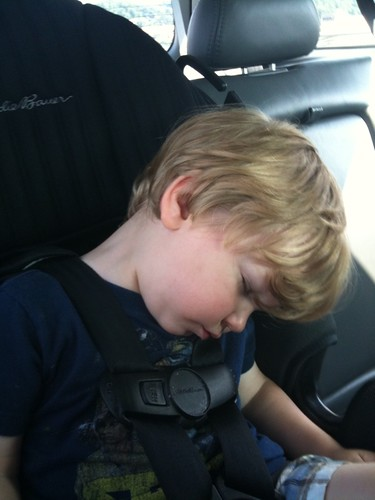 Asleep in the car