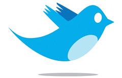 twitter, twitter logo, bird twitter logo, old twitter bird, twitter bird,