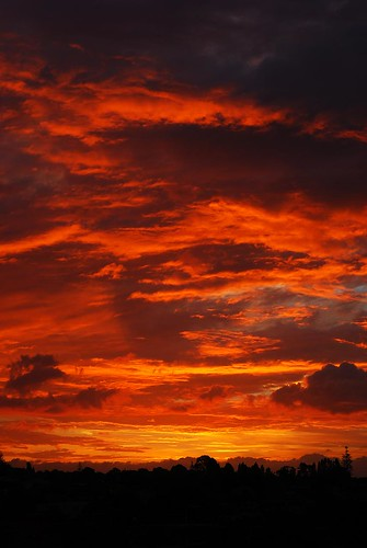 #49/365 - Paint me a sunset...
