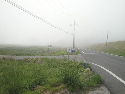 Lost amidst the mists in the Wando countryside