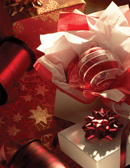 Christmas Holiday Packaging Scene