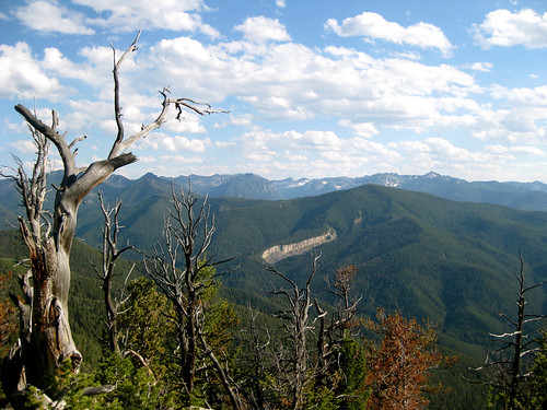 Mt Ellis summit view