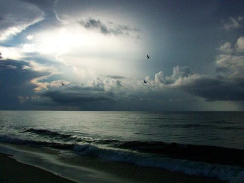 sunrise image (c) Lynne Medsker