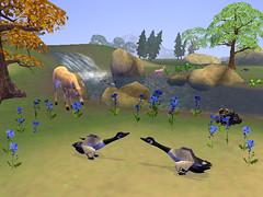 geeseriverridge