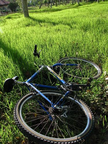 Marvin's bike