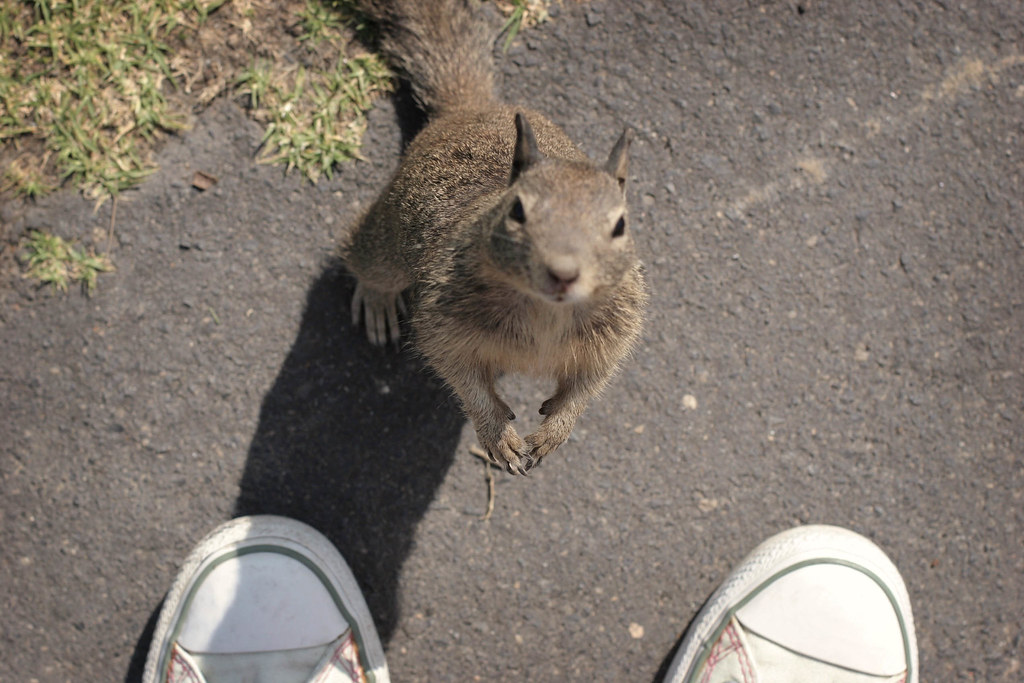 April 23: Oh hai! don't feed me!