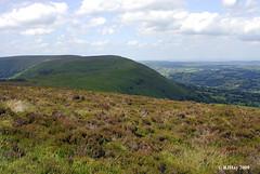 Hattarrall Hill Ridge