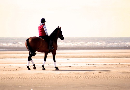 Lone Rider All @ Sea