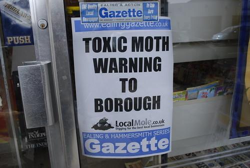 Toxic moths!