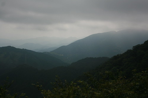The view through the rain and haze.