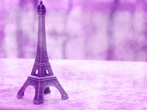 We Love Paris...
