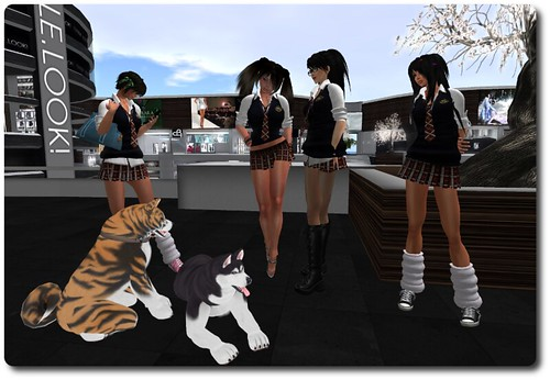 Yumi, Kasumi, Lan, Spooky, & Dogs (Vix, & Scratch) in the mall