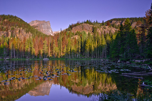 Nymph Lake - Rocky Mountain National Park - Colorado by wboland