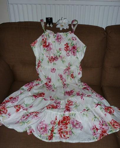 110507 - dress