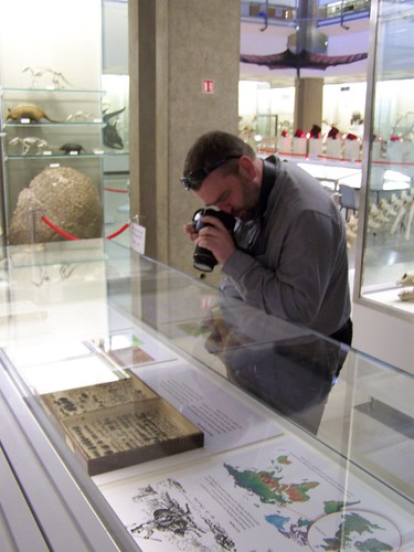 Richard photographing beetles, University Museum of Zoology, Museum