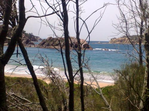 Guerrilla Bay