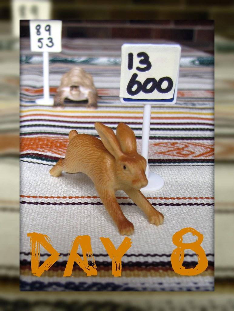 nano goal, day 8